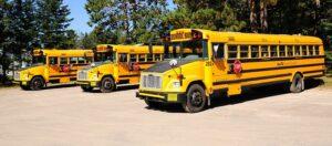 File:NS - School bus.jpg