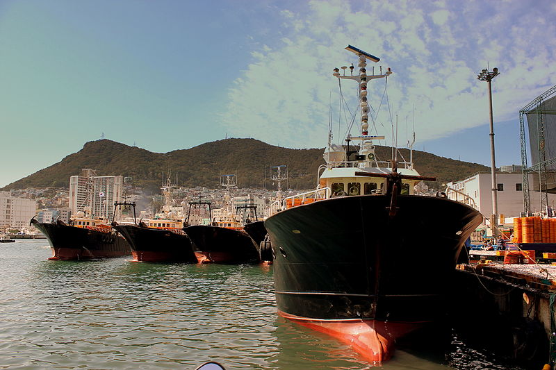 800px-busan_fishing_fleet_at_busan_port_south_korea_oct_2012